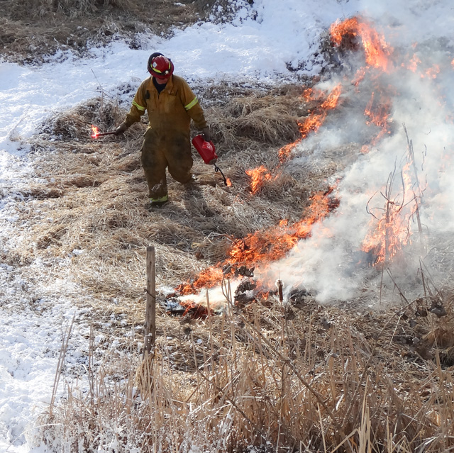 Fire Chief helping with a controlled burn